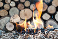 Pellets biomass oak and sunflower in flames stock image Stock Photo