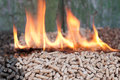 Pelllets biomass pellets in flames selective focus on the heap Stock Photo