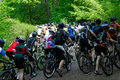 Peloton crowd of bicycle riders racers from back in forest hill section Royalty Free Stock Photo