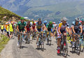 The peloton in mountains col de val louron azet france july including thomas voeckler europcar passing col de val lauron azet Stock Photo
