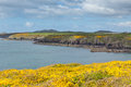 Pembrokeshire coast st brides bay wales path uk near from caerfai to non s in the national park towards ramsey island follows Royalty Free Stock Image
