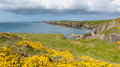 Pembrokeshire coast st brides bay wales path uk near from caerfai to non s in the national park towards ramsey island follows Royalty Free Stock Photos
