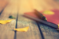 Pen and notebook memory in the summer Royalty Free Stock Photo
