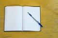 Pena e agenda Imagens de Stock