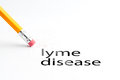 Pencil with eraser closeup of and black lyme disease text lyme disease Royalty Free Stock Images