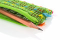 Pencil pouch closeup green on white backgrund Royalty Free Stock Image