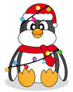 Penguin with christmas lights dressed as santa claus Stock Image
