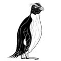 Penguin emperor bird head as symbol for mascot or emblem design, vector illustration Royalty Free Stock Photo