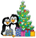 Penguin family Christmas theme 1 Royalty Free Stock Photo
