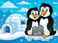 Penguin family theme image 2 Royalty Free Stock Photo