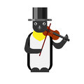 Penguin violinist Royalty Free Stock Photo