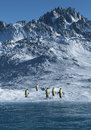 Penguins this image shows a summer day in the antarctica with emperor Stock Photography