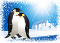Penguins and snowflake frame Royalty Free Stock Images