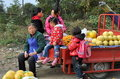 Pengzhou, China: Family Selling Fresh Fruit Stock Photos