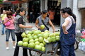 Pengzhou, China: Woman Selling Pomelo Fruits Royalty Free Stock Image