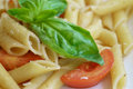 Penne al pomodoro fresco italian dish pasta with fresh tomato and basil Royalty Free Stock Images