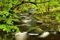 Pennsylvania Forest Stream Royalty Free Stock Images