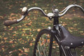 Penny-farthing bicycle in a park Royalty Free Stock Photo