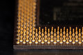 Pentium microprocessor electronic device circuit Royalty Free Stock Photos