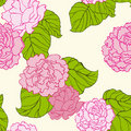 Peonies pattern Stock Photos