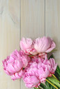 Peony in all its splendor against a wooden background Stock Photo