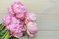 Peony in all its splendor against a wooden background Stock Image