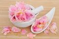 Peony flower petals used in chinese and natural alternative herbal medicine paeonia fuguihua Stock Photo