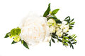 Peony flowers arrangement on white background isolated. Festive