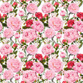 Peony flowers and red roses. Seamless floral background. Watercolor Royalty Free Stock Photo