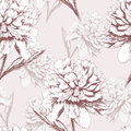 Peony pattern seamless sketch flower background for you scrapbooking Stock Photography