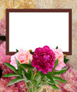 Peony and photo frame Stock Image
