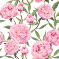 Peony pink flowers. Floral seamless pattern. Watercolor Royalty Free Stock Photo