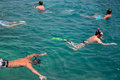 People engaged in snorkeling andaman sea thailand phi phi islands Stock Images