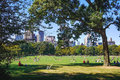People enjoying a beautiful sunny day in Central Park Royalty Free Stock Photo