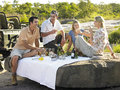 People enjoying picnic on rock four with trees in background Royalty Free Stock Photos