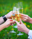 People holding glasses of champagne making a toast outdoors Royalty Free Stock Photo