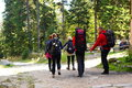 People in the nature walking through karkonosze mountain forest poland Royalty Free Stock Photos