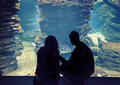 People in oceanarium silhouette of big Royalty Free Stock Photography