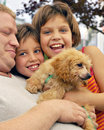 People-Puppy Pile Stock Photos