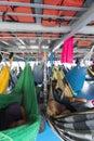 People resting in hammocks on passenger boat deck, Brazil