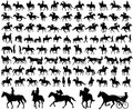 People riding horses silhouettes collection Royalty Free Stock Photo