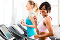 People in sport gym on treadmill running or fitness club two women exercising to gain more fitness Stock Photography