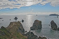 People viewing Pacific Ocean from rocky Redwood Coast Royalty Free Stock Photo