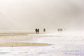 People walking on beach Royalty Free Stock Photo