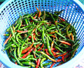 Pepper in basket in market for sale Stock Images