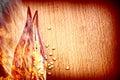 Pepper Chilli In Fire