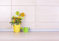 Pepper in flower pot and watering can on kitchen counter Royalty Free Stock Photo