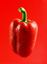 Pepper fresh red on red background Royalty Free Stock Photos