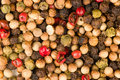 Pepper grains Stock Photography