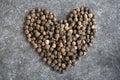 Pepper Heart
